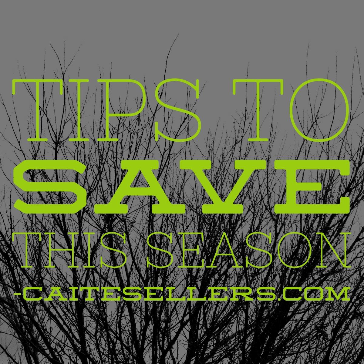 CS  Tips To Save This Holiday Season